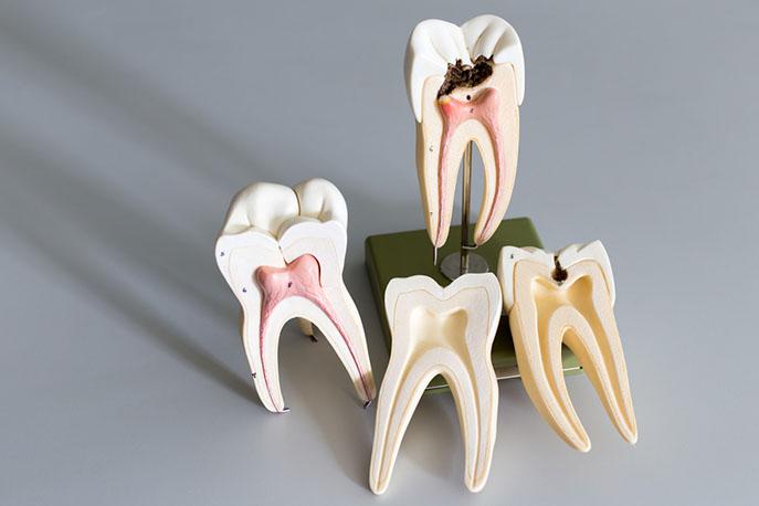 Dental Implantology Barrie